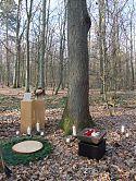 Urnenbestattung im Friedwald 1